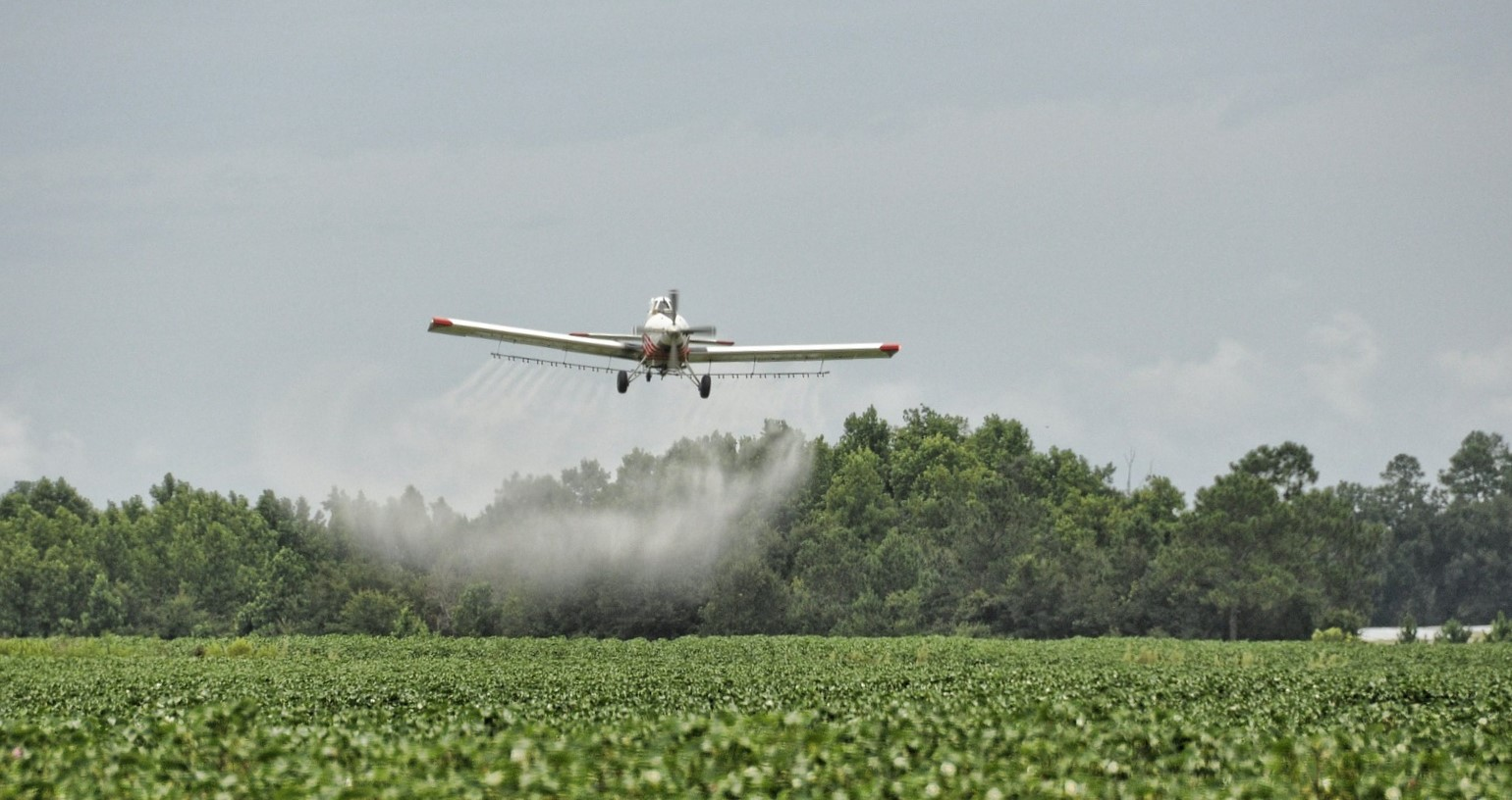 A small low-flying aircraft spraying pesticides on a field of green crops.