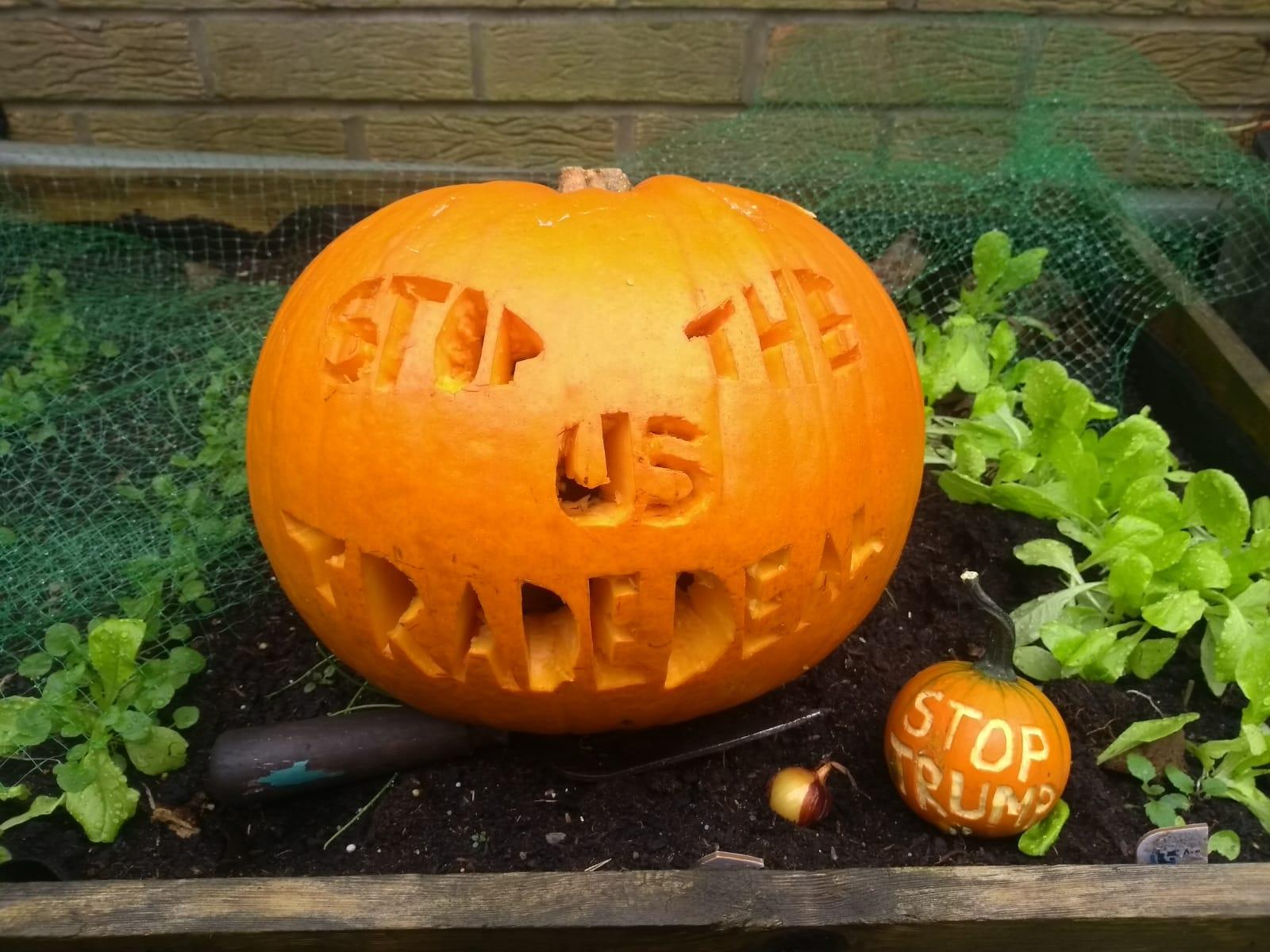 Stop the US Trade Deal pumpkin!